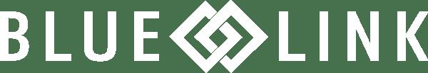 Blue Link Logo white-1