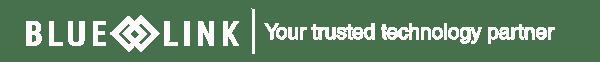blue-link-default-hubspot-logo-white